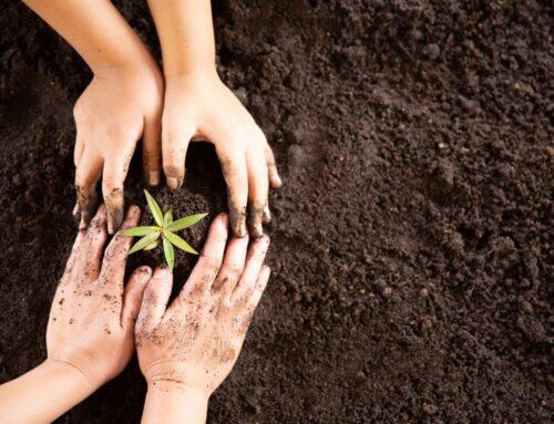 Øget fokus på miljø, samfundsansvar og bæredygtighed